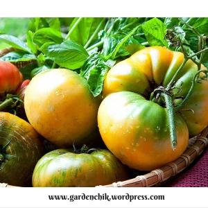 pineapple-heirloom-tomatoes